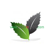 200 Leaf Logos to Increase Your Appetite ID: 17905