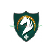 Exceptional horse Logos for Inspiration ID: 19748