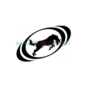 Exceptional horse Logos for Inspiration ID: 20087